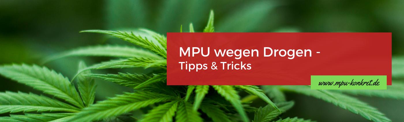 Medizinisch Psychologische Untersuchung wegen Drogen Cannabis Führerschein